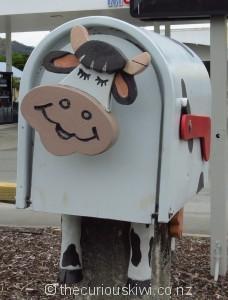 Sweet cow letter box in Murchison
