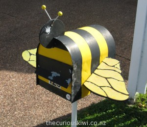 Bumble bee, Rotorua