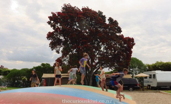 Jumping in the shadow of a pohutukawa