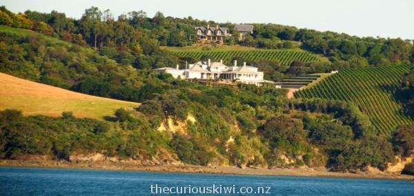 Wine in the making on Waiheke Island