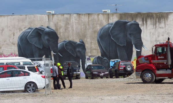 Elephants by OD (Owen Dippie) on a Manchester Street wall