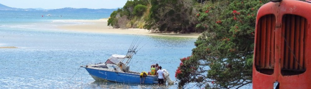 thecuriouskiwi NZ travel blog