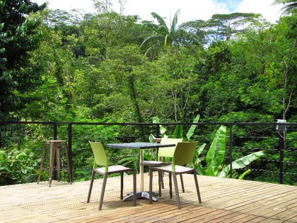 Forest Cafe, Apia, Samoa