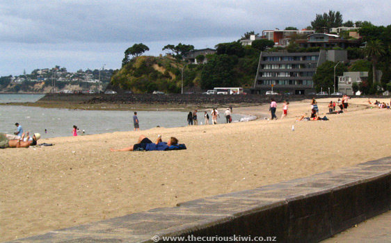 Auckland a z guide the curious kiwi - Mission bay swimming pool auckland ...