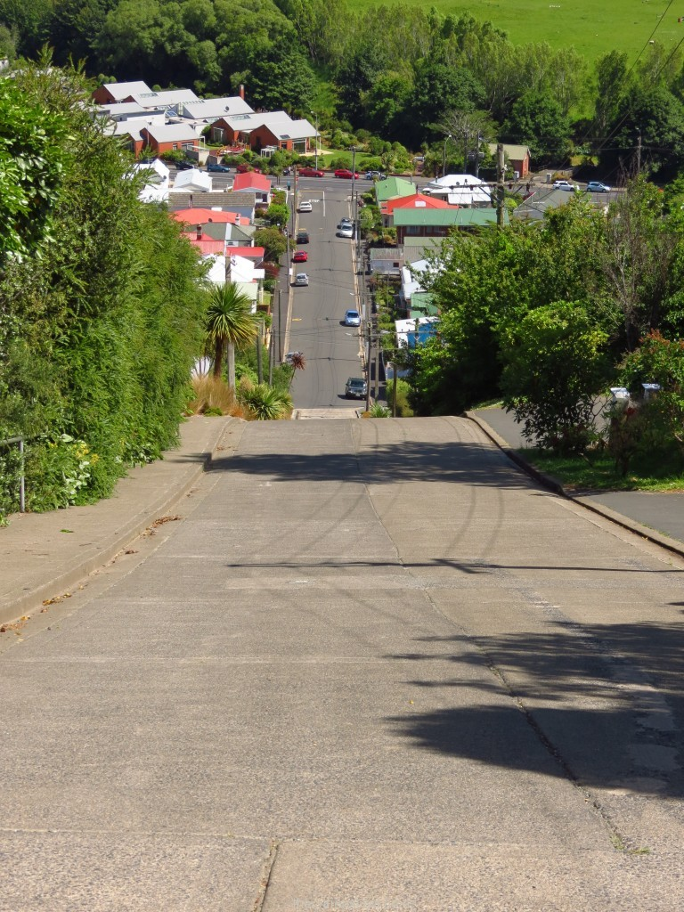 Looking down Baldwin Street in Dunedin