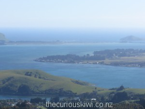 View over Otago Peninsula