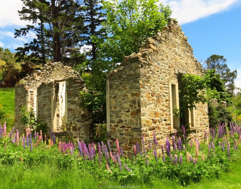 Forgotten school ruins in St Bathans