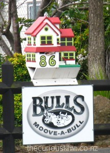 Adora-bull house letter box in Bulls