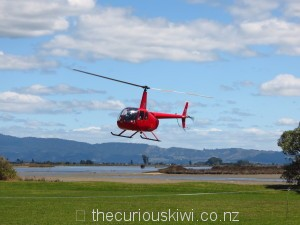 Helicopter flight $30pp