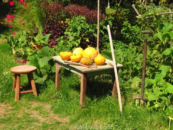 Hobbit sized garden furniture