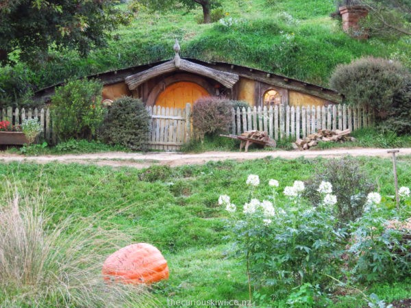 Giant pumpkin at Hobbiton (photo taken on evening tour)