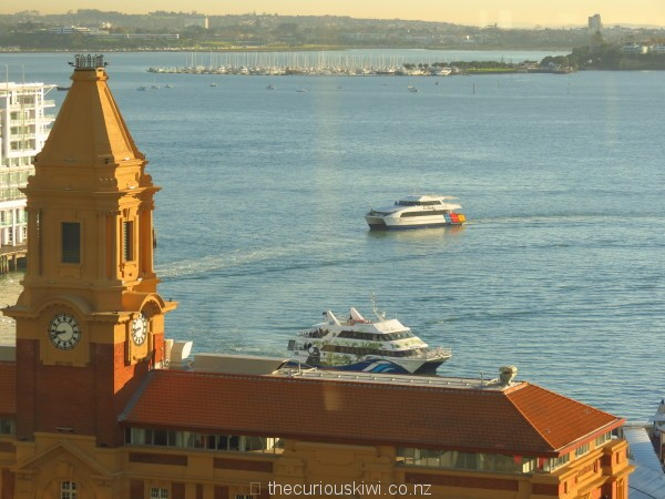 View of Auckland harbour at breakfast