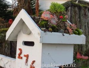 Letter box cactus garden