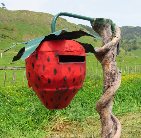 Strawberry letter box