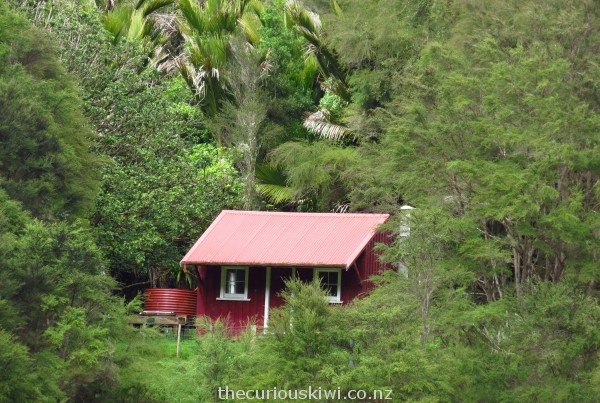 Cute little DOC Downes Hut, located across the river