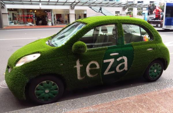 Teza grass car