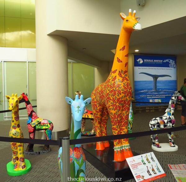 A tower of giraffes at Christchurch Airport