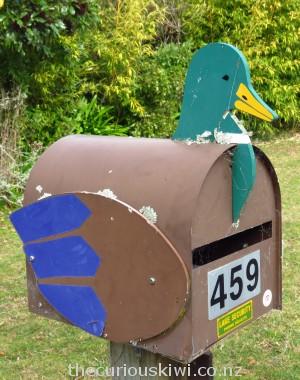 Duck letter box