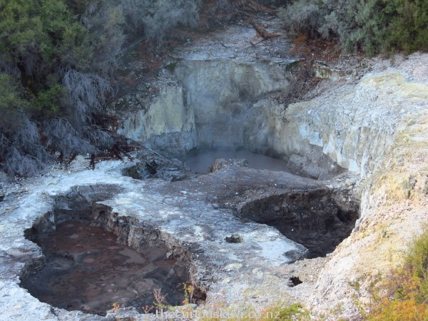 Devil's Ink Pots at Wai-O-Tapu - mud pools coloured by crude oil and graphite