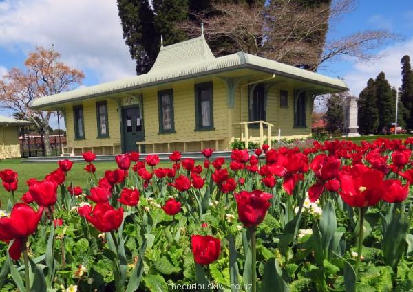 Tulip Fest - Government Gardens, Rotorua