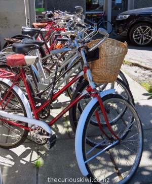 Bikes at The Vintage Peddler
