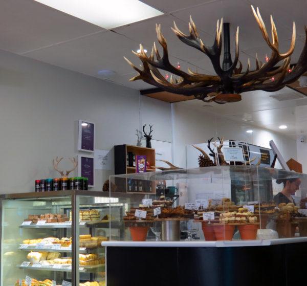 Deer antler chandelier at Scope