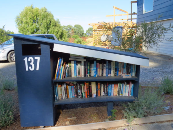 Letterbox/book library in Palmerston North
