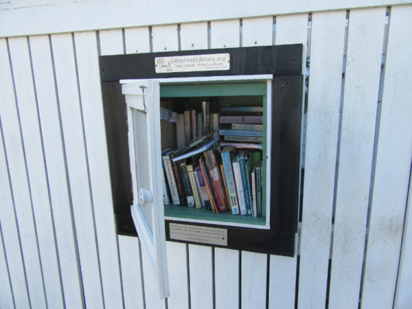 Sylvia's Little Free Library in Nelson