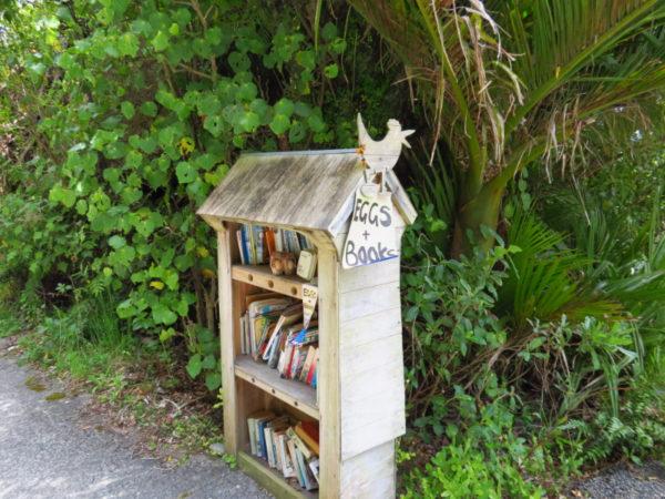 Books and eggs in Punakaiki