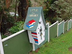 Little library New Plymouth
