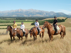Kowhai Riding School