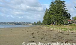 Orewa beach - 3km stretch of sand