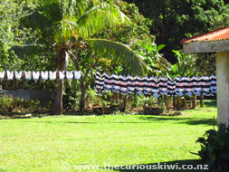 Rugby Jerseys, Tonga