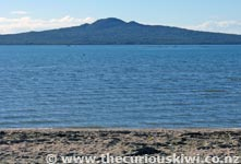 Rangitoto - Water front walk